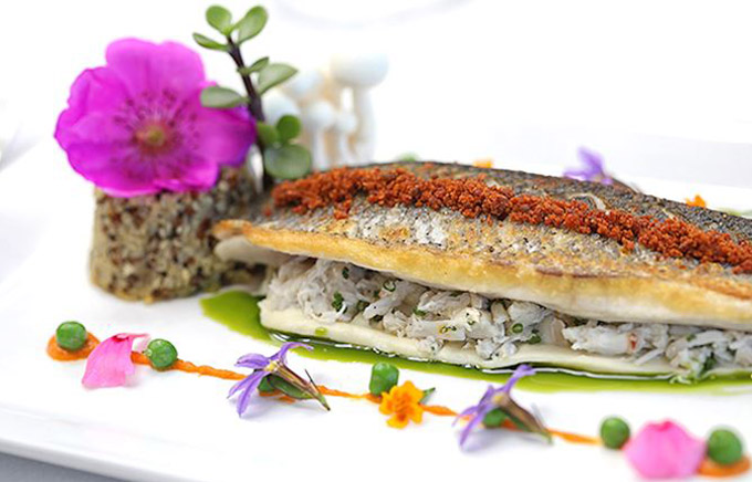 cooking-class-and-dinner-at-marine-room-restaurant-la-jolla